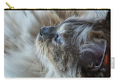 Profile Carry-all Pouch by Karen Stahlros