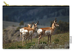 Pronghorns Carry-all Pouch