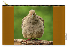 Puffed Dove Carry-all Pouch by Jim Moore