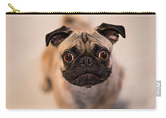 Carry-all Pouch featuring the photograph Pug Dog by Laura Fasulo