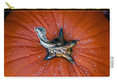 Carry-all Pouch featuring the photograph Pumpkin Stalk by Christopher Meade