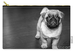 Puppy - Monochrome 2 Carry-all Pouch