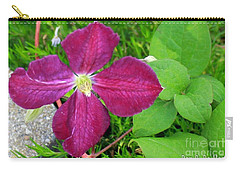 Purple Clematis In Bloom Carry-all Pouch