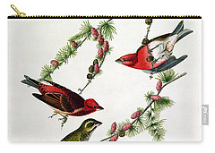 Purple Finch Carry-all Pouch