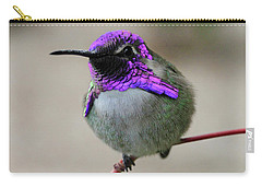 Purple Headed Hummer Carry-all Pouch