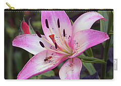 Carry-all Pouch featuring the photograph Purple Lily by Elvira Ladocki