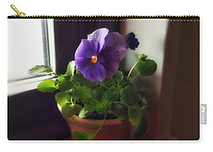 Purple Pansy On My Windowsill Carry-all Pouch