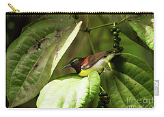 Purple-rumped Sunbird Carry-all Pouch