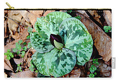 Purple Toadshade Trillium Carry-all Pouch