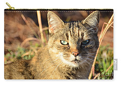 Purr-fect Kitty Cat Friend Carry-all Pouch