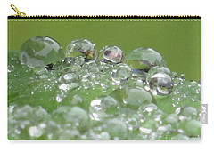 Morning Drops Carry-all Pouch by Kim Tran