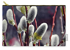 Pussy Willow Spring  Carry-all Pouch