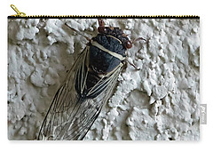 Carry-all Pouch featuring the photograph Putnam's Cicada by Anne Rodkin