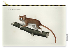Pygmy Mouse Lemur Carry-all Pouch