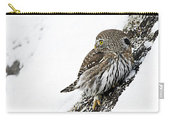 Pygmy Owl Carry-all Pouch