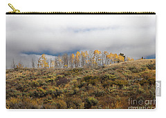 Quaking Aspen Tree Landscape, Grand Teton National Park, Wyoming Carry-all Pouch