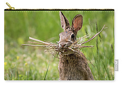 Rabbit Collector Square Carry-all Pouch by Terry DeLuco