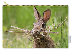 Rabbit Collector  Carry-all Pouch by Terry DeLuco