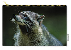 Raccoon 1 Carry-all Pouch