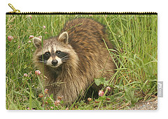 Carry-all Pouch featuring the photograph Raccoon  by Doris Potter