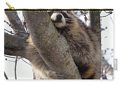 Afternoon Nap-raccoon Up A Tree  Carry-all Pouch