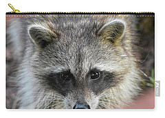 Raccoon's Gorgeous Face Carry-all Pouch