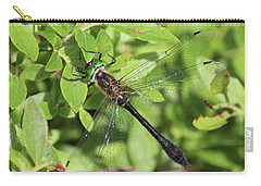 Racket-tailed Emerald  Carry-all Pouch