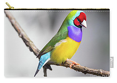 Rainbow Finch Carry-all Pouch