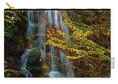 Rainbow Springs Waterfall Carry-all Pouch by Louis Ferreira