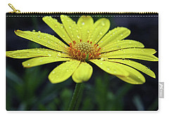 Carry-all Pouch featuring the photograph Raindrops On Daisy by Judy Vincent