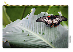 Raining Wings Carry-all Pouch by Karen Wiles