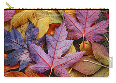 Rainy Day Colors Carry-all Pouch by Lynn Hopwood