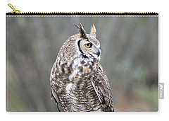 Rainy Day Owl Carry-all Pouch