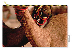 Rajasthan_21-19 Carry-all Pouch