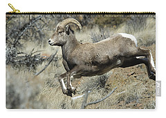 Ram In A Hurry Carry-all Pouch