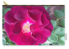 Rambling Rose Carry-all Pouch