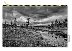 Carry-all Pouch featuring the photograph Raquette Lake Bog by David Patterson