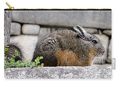 Rare Little Chincha Carry-all Pouch
