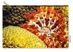 Carry-all Pouch featuring the photograph Rare Orange Tipped Corallimorph - Fire In The Sea by Amy McDaniel