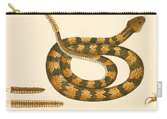 Rattlesnake Carry-all Pouch by Mark Catesby