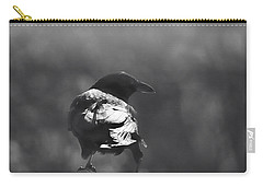 Carry-all Pouch featuring the photograph Raven In The Sun by Susan Capuano