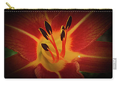 Carry-all Pouch featuring the photograph Reaching For The Sun by Judy Hall-Folde