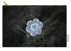 Real Snowflake - 29-jan-2018 - 1 Carry-all Pouch
