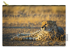 Reclining Cheetah Carry-all Pouch by Inge Johnsson