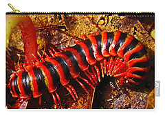 Red Almond Millipede Carry-all Pouch