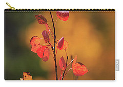 Carry-all Pouch featuring the photograph Red And Gold by David Chandler
