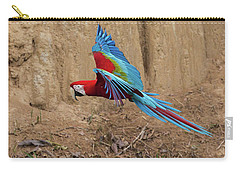Red-and-green Macaw Carry-all Pouch