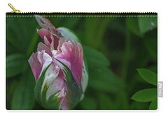 Red And White Bud 1 Carry-all Pouch by Timothy Latta