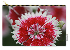 Carry-all Pouch featuring the photograph Red And White Flower by Tim Stanley
