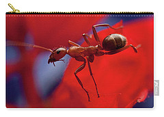 Carry-all Pouch featuring the photograph Red Ant Macro by Jeff Folger